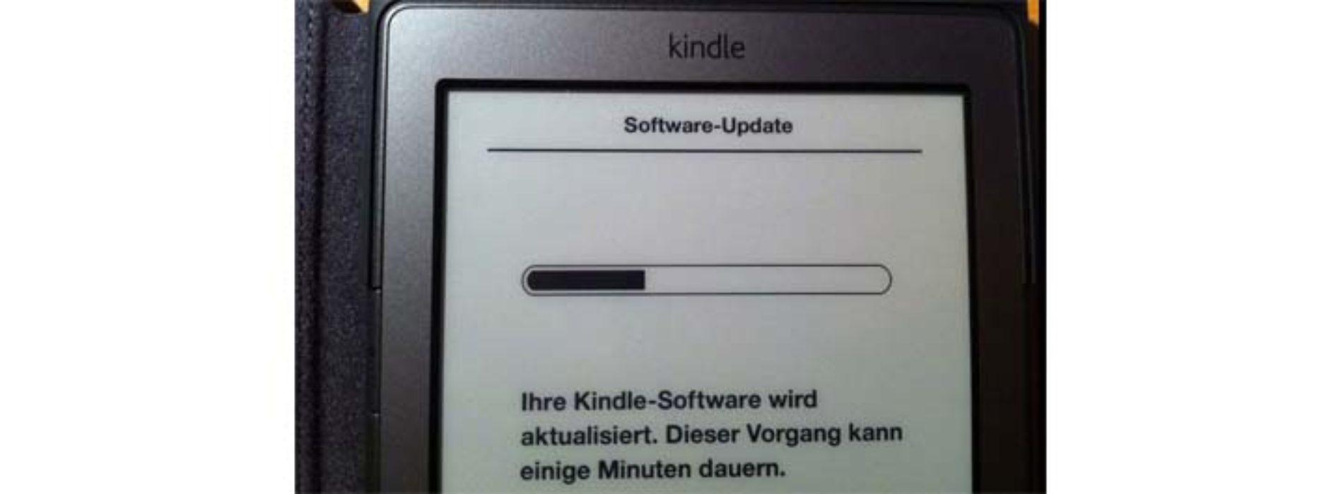 Прошивка электронной книги