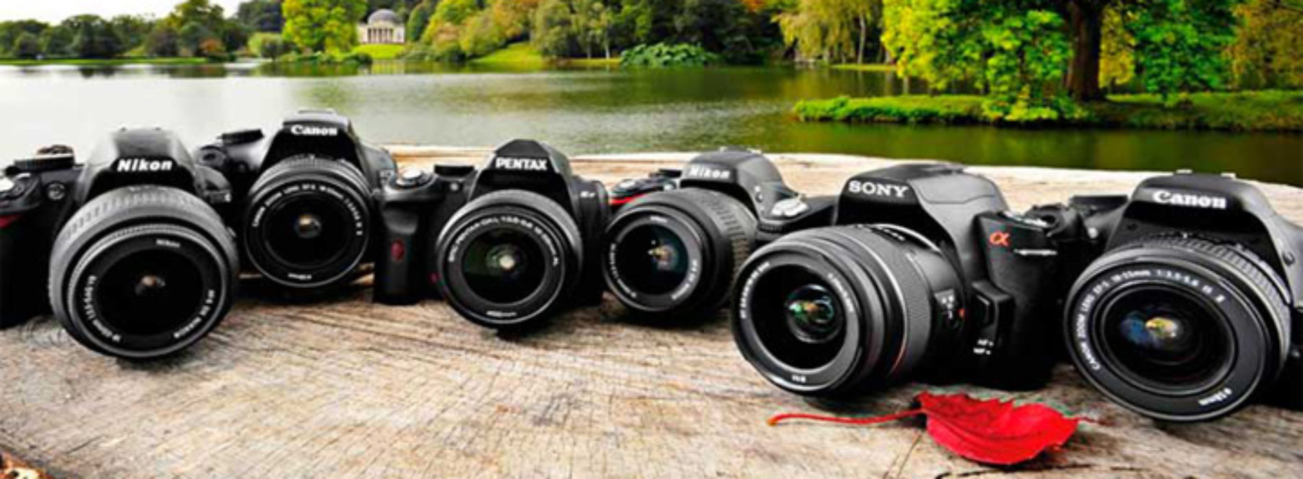Ремонт зеркальных фотоаппаратов
