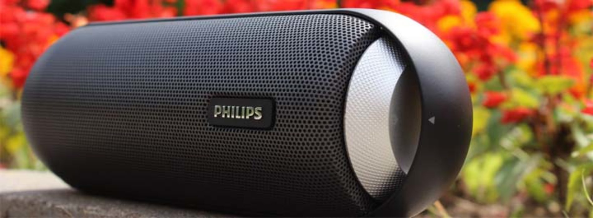 Ремонт портативной акустики Philips